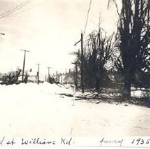 Image of Print, Photographic - Photograph of Yale Road