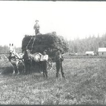 Image of Negative, Glass-plate - Three men with loaded hay wagon