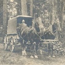 Image of Print, Photographic - Portrait of Jack Karr with delivery wagon for Bartlett Bros., Rosedale General Store.