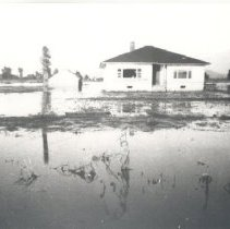 Image of Print, Photographic - View of home after the flood of 1948