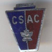 Image of Pin, Lapel (CSAC) - 1985.019.007a-b
