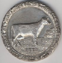 Image of Medal, Commemorative - 1991.026.001a-b