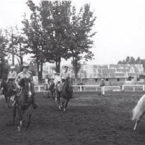 Image of Print, Photographic - Fall Fair horse judging.