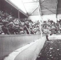 Image of Print, Photographic - Cavalcade of Horses Event
