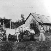 Image of Print, Photographic - Photograph of Mr. & Mrs. Edwin (Ted) Walton with horse drawn wagon on their farmyard.