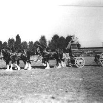 Image of Print, Photographic - Claude L. Worthington Clydesdale Horse Team and Wagon
