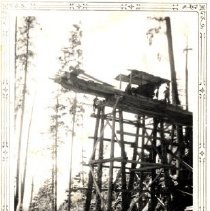 Image of Print, Photographic - View of crew working on construction of a high trestle on a logging road at Harrison Lake.
