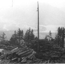 Image of Print, Photographic - View of Thornton Logging cold decking logs on Hope Mountain