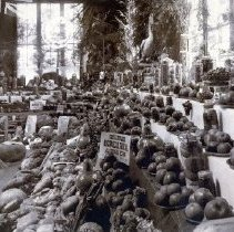 Image of Print, Photographic - View of a Chilliwack Agricultural Association display at the New Westminster Exhibition.