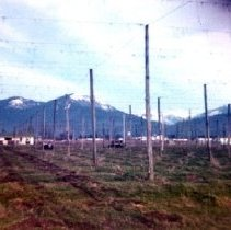 Image of Print, Photographic - Empty Hops Fields