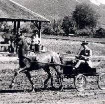Image of Print, Photographic - View of Johnny Lundy and trotter horse on Fairgrounds racetrack.