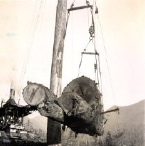 Image of Print, Photographic - View of load of logs suspended over rail tracks