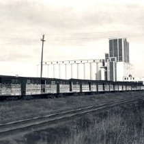 Image of Print, Photographic - View of long line of Canadian National Railway freight cars in front of tall concrete grain elevator.