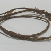 Image of Rope (Bark) - 1956.001.0377