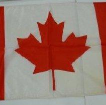 Image of Flag - 1986.068.006