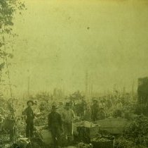 Image of Print, Photographic - Hop Yard Workers