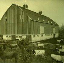 Image of Print, Photographic - Edenbank Barn