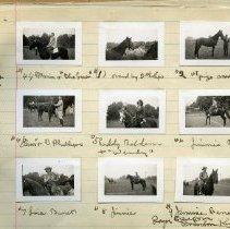 Image of Album, photograph - Album of Light Horses at the Chilliwack Fair