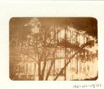 Image of 1961-002-03764 - Print, Photographic