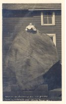 Image of PO.003.0043 - Peter Maloney, Jr. as a very small baby in a long white dress sitting atop the fallen cut of the big Maloney's fir stump log cut near the Maloney's grove. The fallen cut is propped up against the Maloney's Livery Stable on the Bendigo side of the building.  Siegrist 299