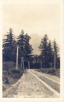 Image of PO.008.0104 - Mount Si near Snoqualmie, Wash.  Ellis 179.
