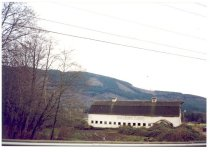 Image of PO.015.0622 - Tollgate Farm barn east side view. 1994.  White barn with words Tollgate Farm painted on side.  Two vents on roof.  Trees without leaves to left.  Wires in upper sky.  Rattlesnake Ridge in background.  Blackberry vines in the foreground.  Tractor with blue tarp on right.