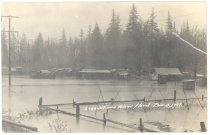 Image of PO.229.0005 - Snoqualmie River Flood. Tent town where Japanese lived.