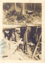 Image of PO.989.0013 - Camp Joy, Snoqualmie Falls Lumber Co Bridge, 1932. '32. Jack Behie, Supr. I rigged a spar tree at each end, enabling us to handle timbers for the bridge. We had three carpenter-adze men! All were Scandinavians.