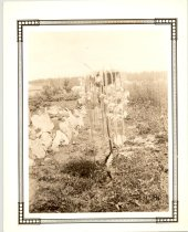 Image of PO.986.0057 - WW and Muriel Brown's garden in Meadowbrook.