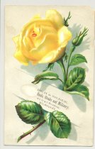 Image of 074.1045.c. Rose Postcard. Rich And Silber Co Ad.1