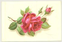 Image of 074.1045.a. Rose Postcard.1