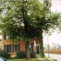 Image of 29 Stewart Ave_page_1