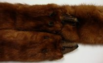 Image of Stole composed of four minks (detail)