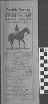 Image of Dade Park Jockey Club, 1935