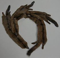 Image of Mink stole or neck piece