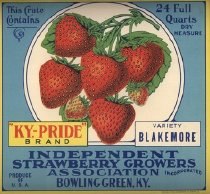 Image of Independent Strawberry Growers Association -