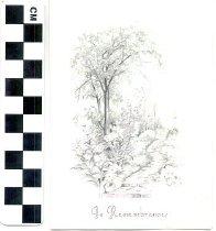 Image of Memorial card
