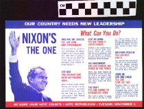 Image of Nixon's the One