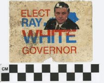 Image of Elect Ray White Governor