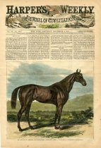 Image of Race-Horse in Kentucky
