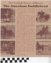 Image of The Saddlebred pamphlet