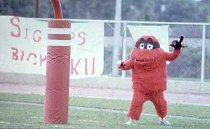 Image of Big Red - Athletic Media Relations