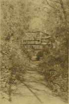 Image of Bridge - Triplett, William