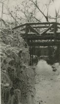 Image of Bridge in Ice - Unknown