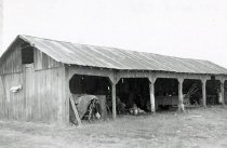 Image of Machine Shed - Lawson, Owen