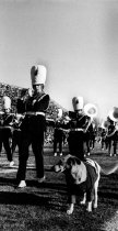 Image of Marching Band - Applewhite, Scott