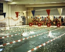 Image of Swimming Meet - Unknown
