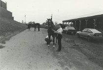 Image of FFA Field Day - Unknown