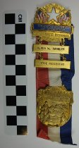 Image of Ribbon badge from the 1952 National Democratic Convention - Ribbon, Political