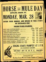 Image of Horse and Mule Day -